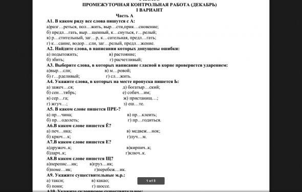 Контрольная работа по русскому